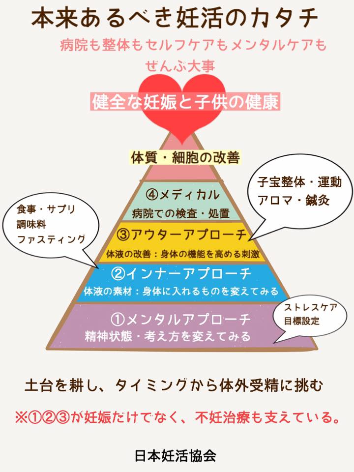 妊活ピラミッドで土台を整えて妊娠体質に